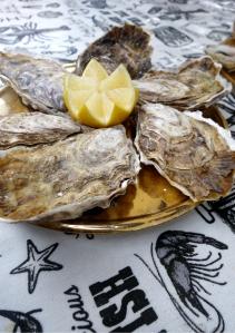 eat_wear_wander_oysters