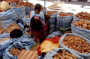 eat_wear_wander_potatoes